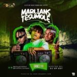 [Mixtape] DJ OP Dot – Marlians Tesumole Non-Stop Dance Mix