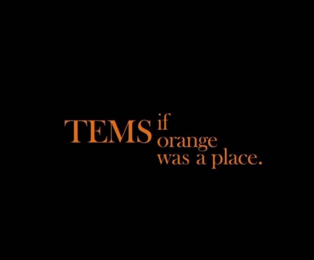 Tems – Avoid Things Mp3
